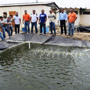 Buscan Tecnificar A Los Camaroneros En Ecuador