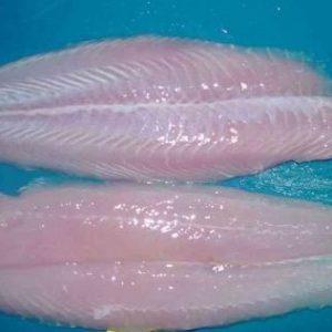 Las Poblaciones Costeras Empiezan A Consumir Basa Y Tilapia Como Base De Su Dieta Alimenticia De Pescados Y Mariscos; Primer Síntoma De La Declinación De La Producción Pesquera