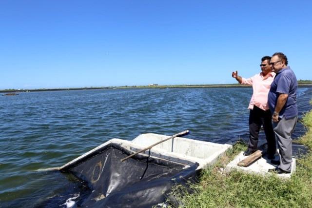 Yucatán Idóneo Para La Acuacultura