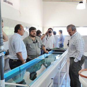 """Buscan Promover La """"acuicultura"""" En El Sur Y El Valle De Uco, Argentina"""