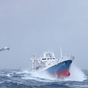 Pescanova Se Alía Con Sustainable Fisheries Para Mejorar La Sostenibilidad De Su Actividad Pesquera.