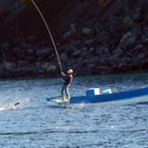 Ayudas De 16,8 Millones A La Pesca Y La Acuicultura En España