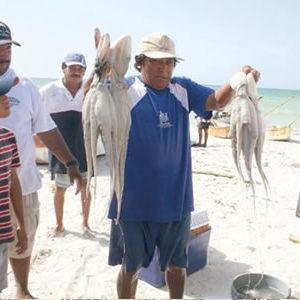 Refuerza CONAPESCA El Impulso A La Acuacultura, Ante La Estabilización Del Volumen De La Producción Pesquera