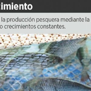 Sube Producción Vía Acuacultura En México