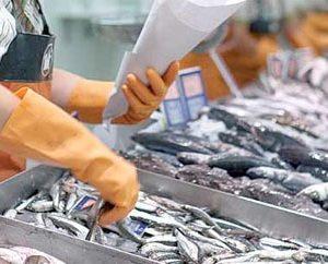 El Gobierno Aprueba Ayudas A Las Organizaciones Profesionales Del Sector De La Pesca Y Acuicultura En España