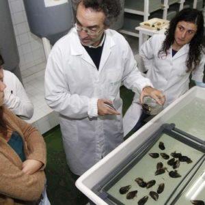 Quince Años De Investigación Acuícola En España