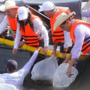 Invierten En Michoacán Para Que Sea Líder Nacional En La Producción De Tilapia