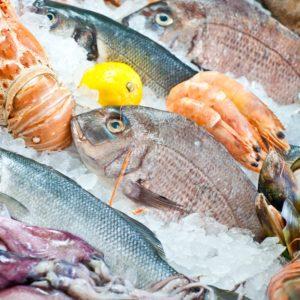 Se Lanzó Plan Estratégico Para Aumentar El Consumo De Productos Del Mar En Chile