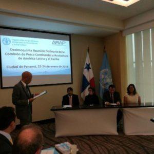 FAO Identifica En Panamá Tres Prioridades Para Una Pesca Y Acuicultura Sostenible En La Región