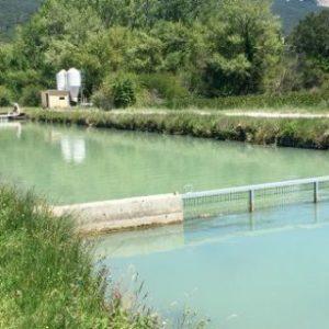 Apromar Aplaude La Recuperación Del Comité Consultivo Del Sector Pesquero Tras Tres Años De Inactividad En España