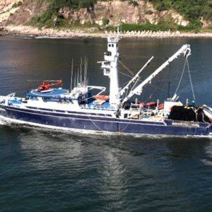 Inicia La Temporada De Pesca De Atún En México