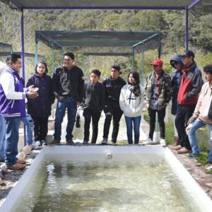 UIEPA Crea Sistema Acuícola Para Producción De Tilapia Y Trucha