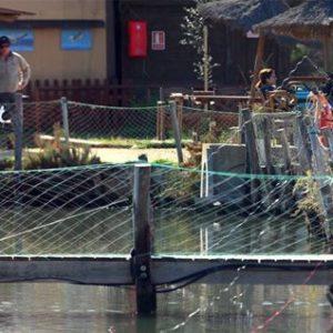 Promueven Programas Para Pesca Y Acuacultura