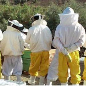 El Aula Bee Garden Consigue Realizar Un Módulo De Acuaponía Gracias A Un Proyecto De 'crowdfunding' En España