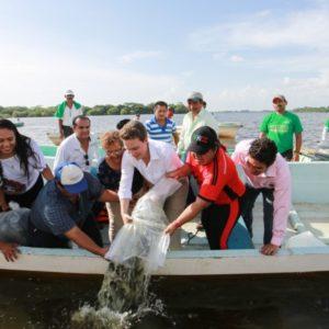 Chiapas Aporta El 3.3% De La Producción Pesquera Nacional