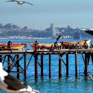 Gobierno Promulga Ley Que Crea El Instituto Nacional De Desarrollo Sustentable De La Pesca Artesanal Y De La Acuicultura De Pequeña Escala En Chile