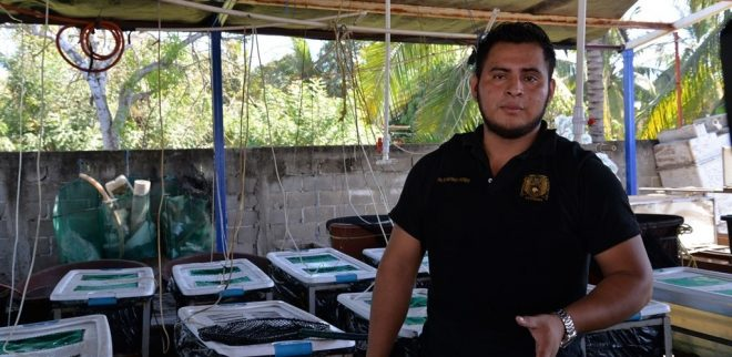 Desarrolla Proyecto Sustentable De Acuacultura En Especies Nativas