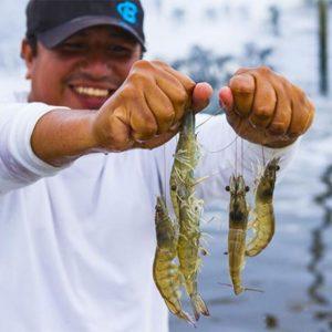 Cajamarca Conformará Alianzas Para Innovar En Pesca Y Acuicultura En Perú