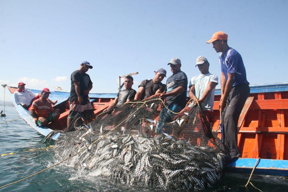 Pescadores 990×660