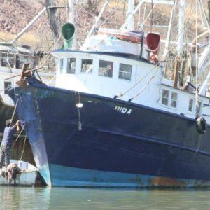 Japoneses Traerán Barcos Con Robot Para Pesca De Calamar En México