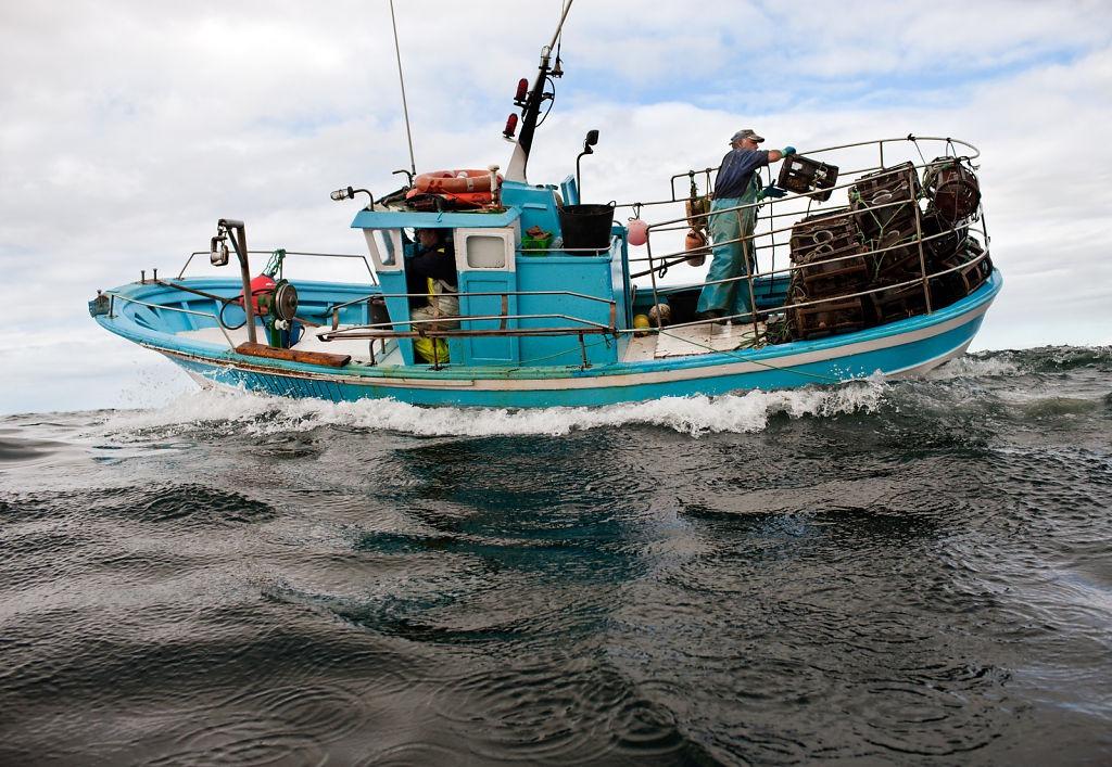 Octopus Fishermen Off The Galician Coast In Spain
