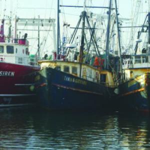 Fortalecen Trabajo Científico En Pesca En México