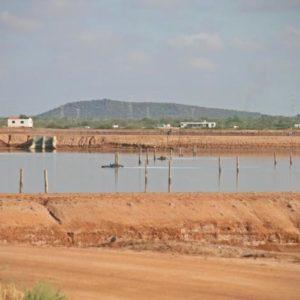Productores De Sonora Toman Medidas Para Prevenir Enfermedades En La Acuacultura
