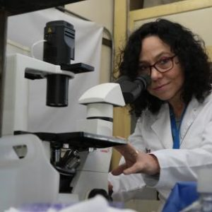 Científica Desarrolla Poderoso Compuesto Para Controlar Patógenos En La Industria Salmonera En Chile