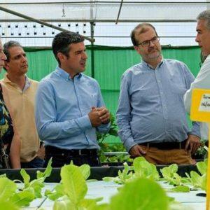 Gran Canaria Inaugura Una Granja De Acuaponía, Que Combina La Agricultura Y La Acuicultura