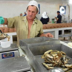 Más Allá Del Mar En Cuba