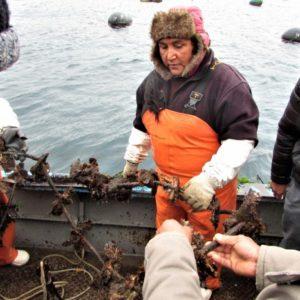 En El Sur Del País Replican Exitoso Proyecto De Acuicultura Desarrollado En Coquimbo, Chile