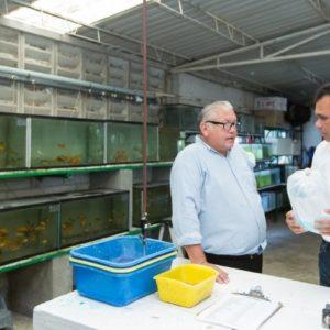 Los Productos Acuícolas De Yucatán Llegan A Varias Naciones
