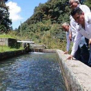 Tecnificadas Solo 17% De Granjas Acuícolas En Hidalgo, México