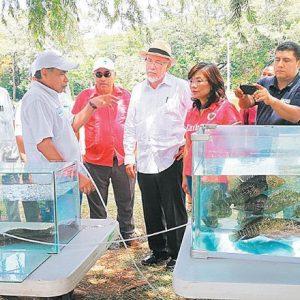 Taiwán Transfirió Tecnología Para La Acuicultura Familiar En El Salvador