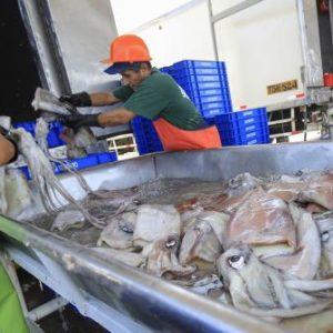 Firman Primer Contrato Para Financiar Proyectos En Pesca Y Acuicultura En Perú