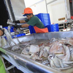 Firman Primer Contrato Para Financiar Proyectos En Pesca Y Acuicultura