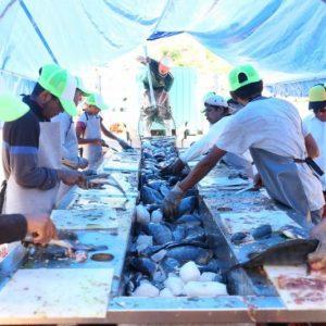 Acuicultura, Un Camino De éxito En Michoacán
