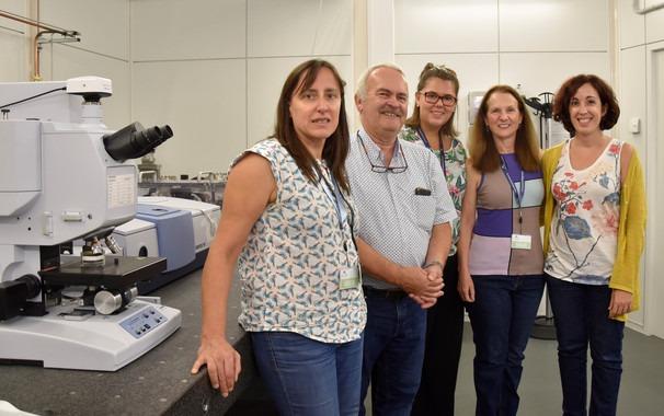 La Luz Del Sincrotron ALBA Busca Nuevas Vacunas Para Peces Image 380