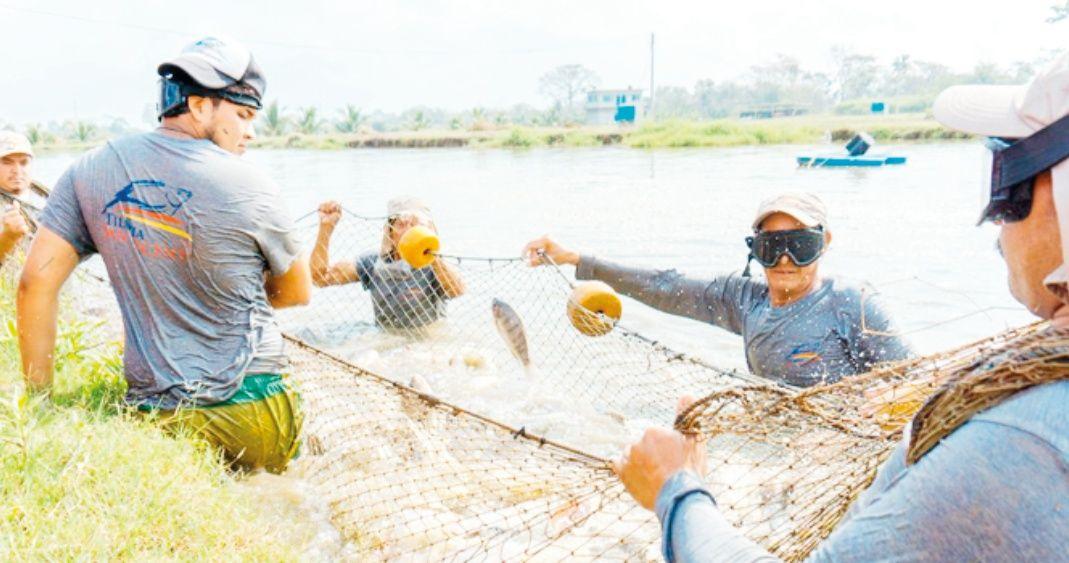 Pescadores 2.jpg 1619830263