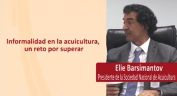 ¿Cómo Superar La Informalidad En La Acuicultura?