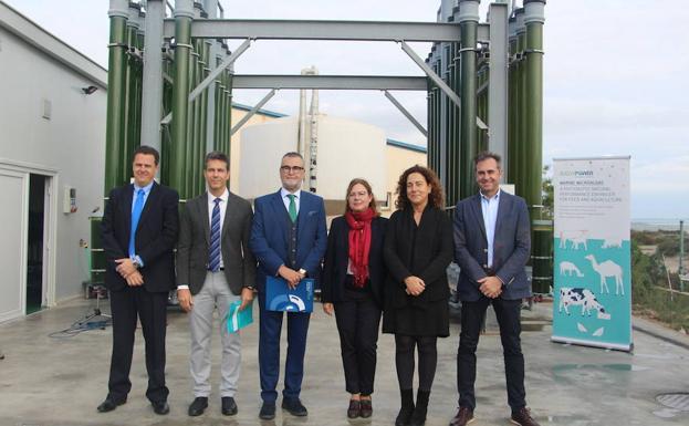 El Centro De Recursos Marinos Del Imida Cuenta Ya Con Una Planta De Cultivo De Microalgas