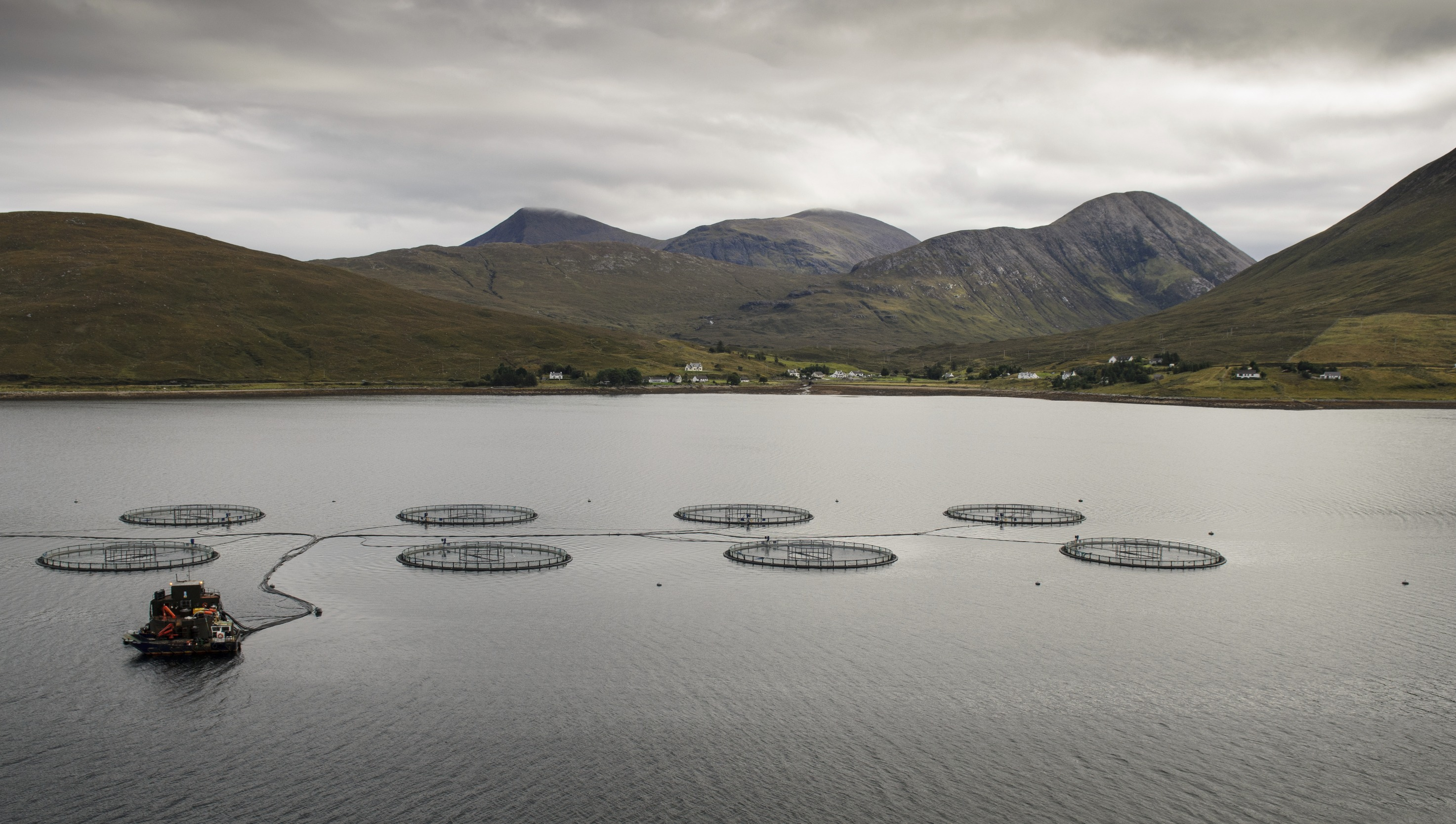 A Salmon Fish Farm In Loch Ainort On The Isle Of Skye In The Highlands Of Scotland. Foothills Of The Cuillin Mountains Form The Backdrop To The Sea Loch With An Array Of Circular Fish Cages.