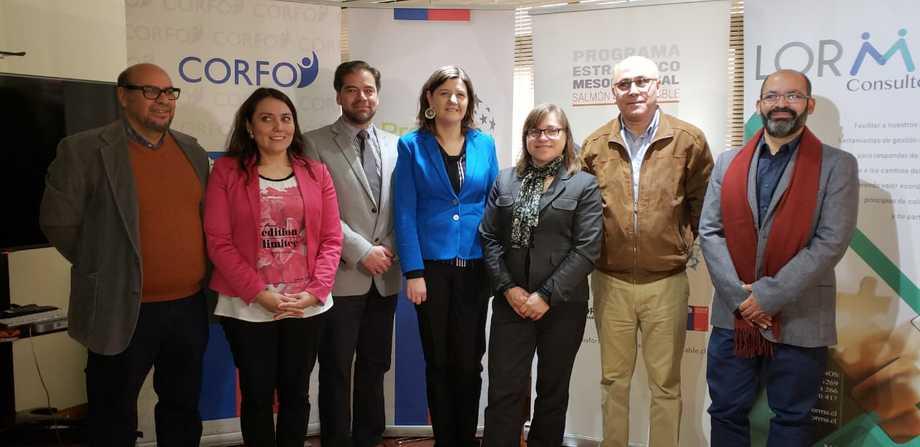 Empresas Chilenas De Servicios Acuícolas Avanzan Para Expandir Sus Operaciones A Perú